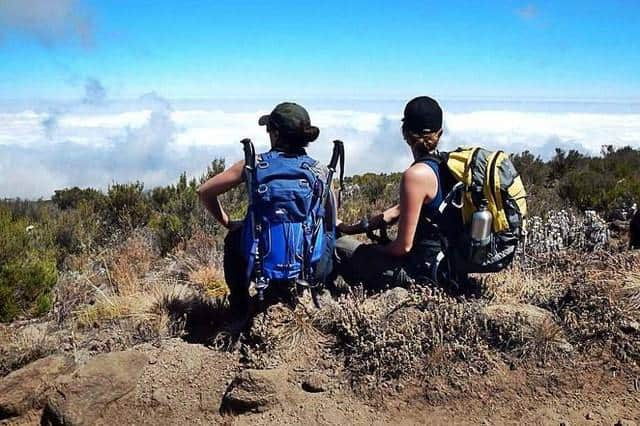 Kilimanjaro Review